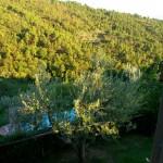 Casa Vacanze La Baghera – La Baghera Alta – Appartamento Donatello - Camera Matrimoniale Vista Esterna