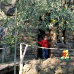 Casa Vacanze La Baghera - La Baghera Alta - Parco Giochi