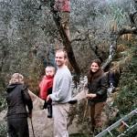 Casa Vacanze La Baghera - Raccolta delle olive